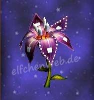 Quadratjuwelenblüte - elfe's Wizsenspage - Offizielle
